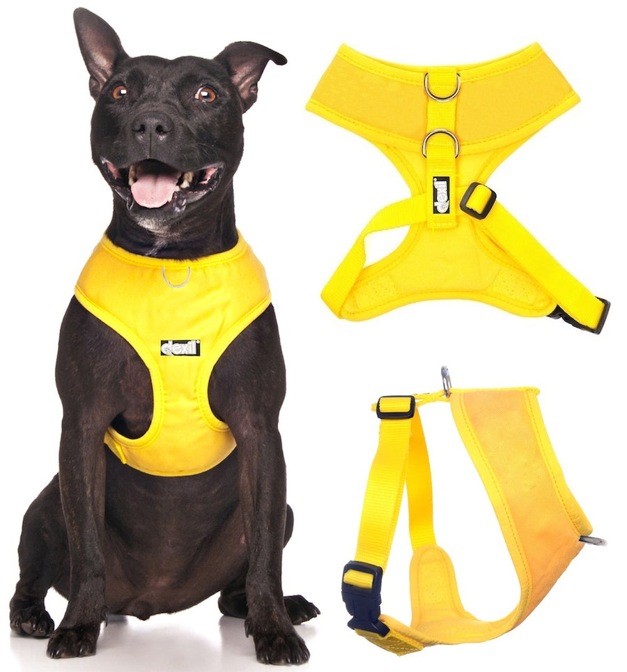 SUNBURST YELLOW - Medium Vest Harness
