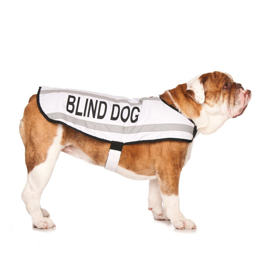 M/L Coat - BLIND DOG - M/L Coat