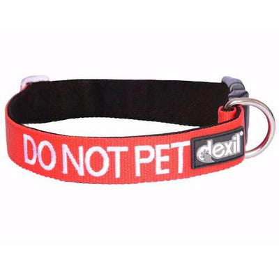 S/M Clip Collar - DO NOT PET - S/M Clip Collar