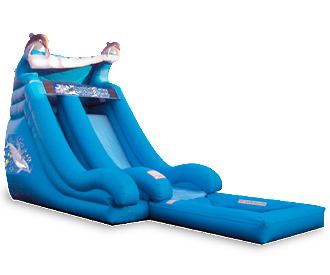 18' Dolphin Wave Water Slide