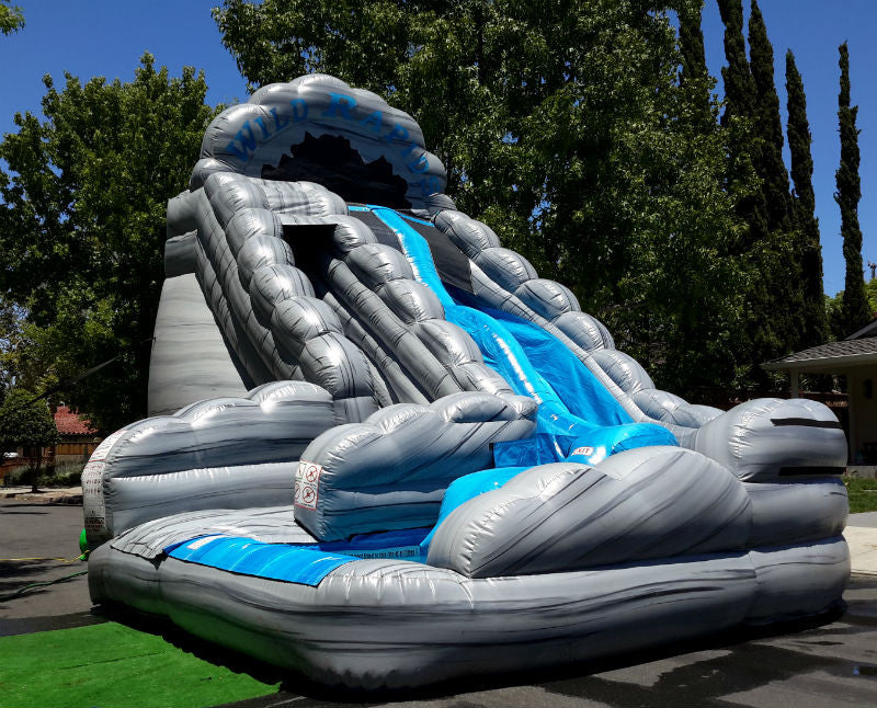 Wild Rapids Dual Water Slide