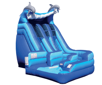 Dolphin Wild Splash Dual Lane Water Slide