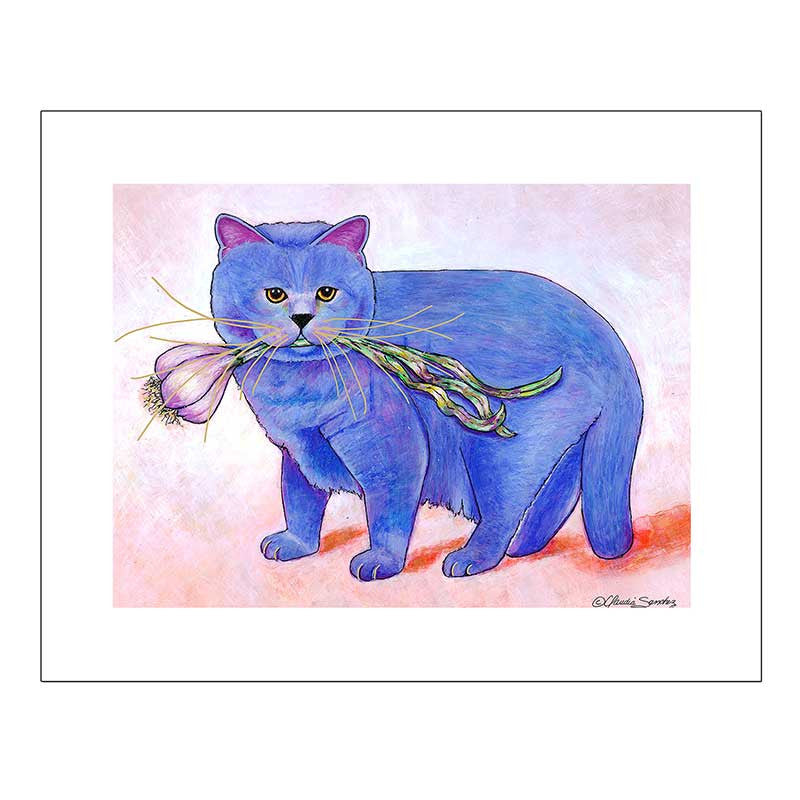 Kayo Garlic Cat Giclee on Watercolor Paper by Claudia Sanchez, Claudia's Cats Collection
