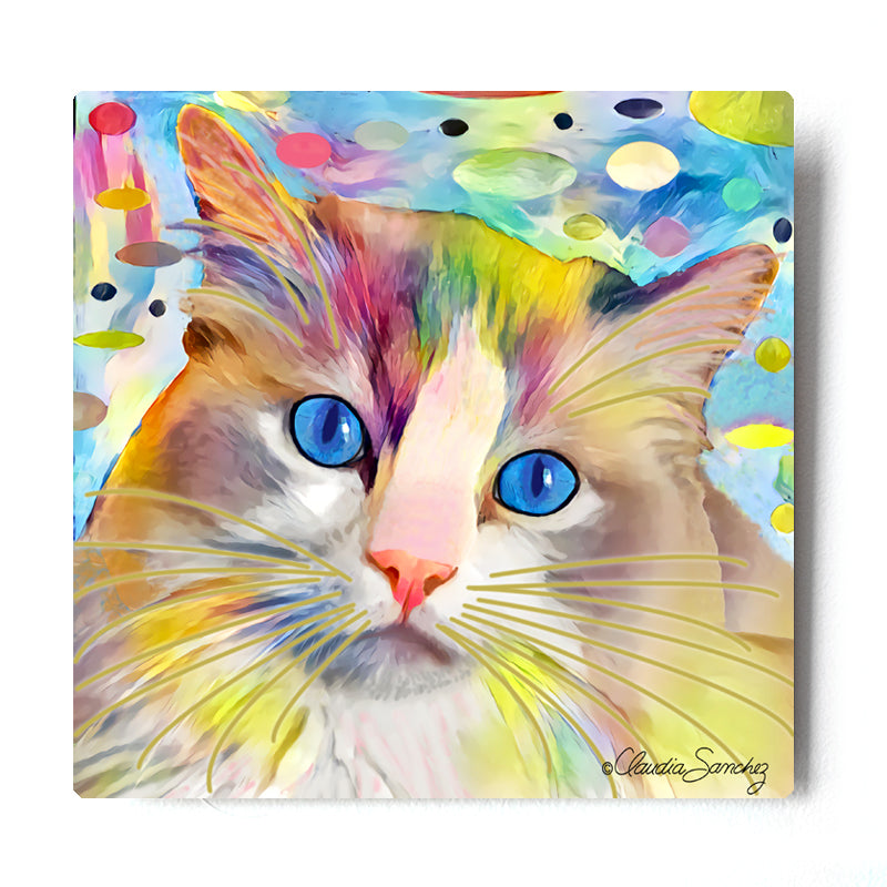 Gunner's Face Aluminum Cat Art Print by Claudia Sanchez