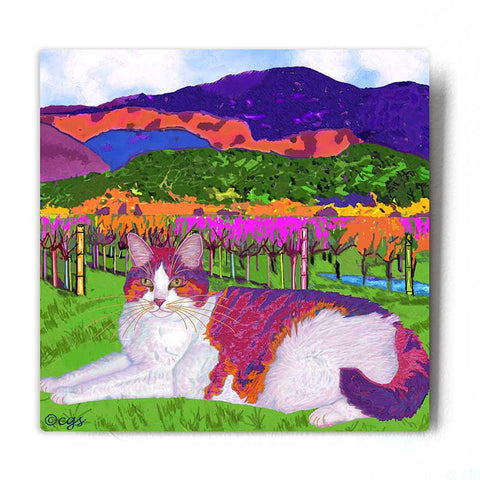 Moocher in Butler Vineyards Aluminum Cat Art Print by Claudia Sanchez - White Metal Background