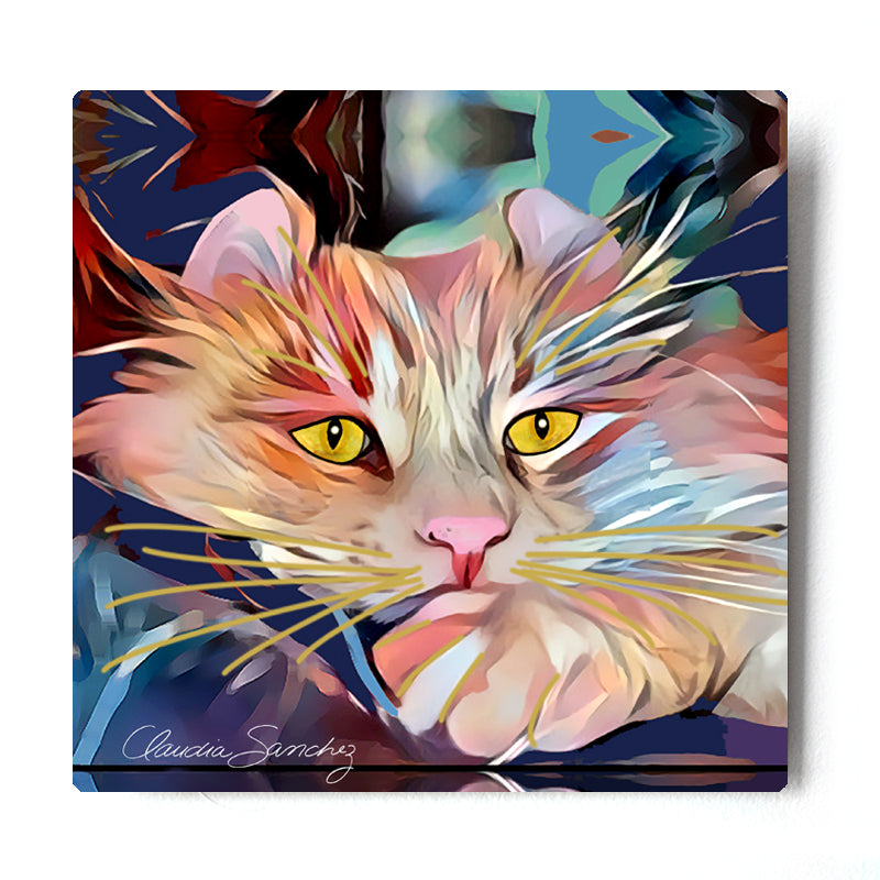 Simba's Gaze Aluminum Cat Art Print by Claudia Sanchez