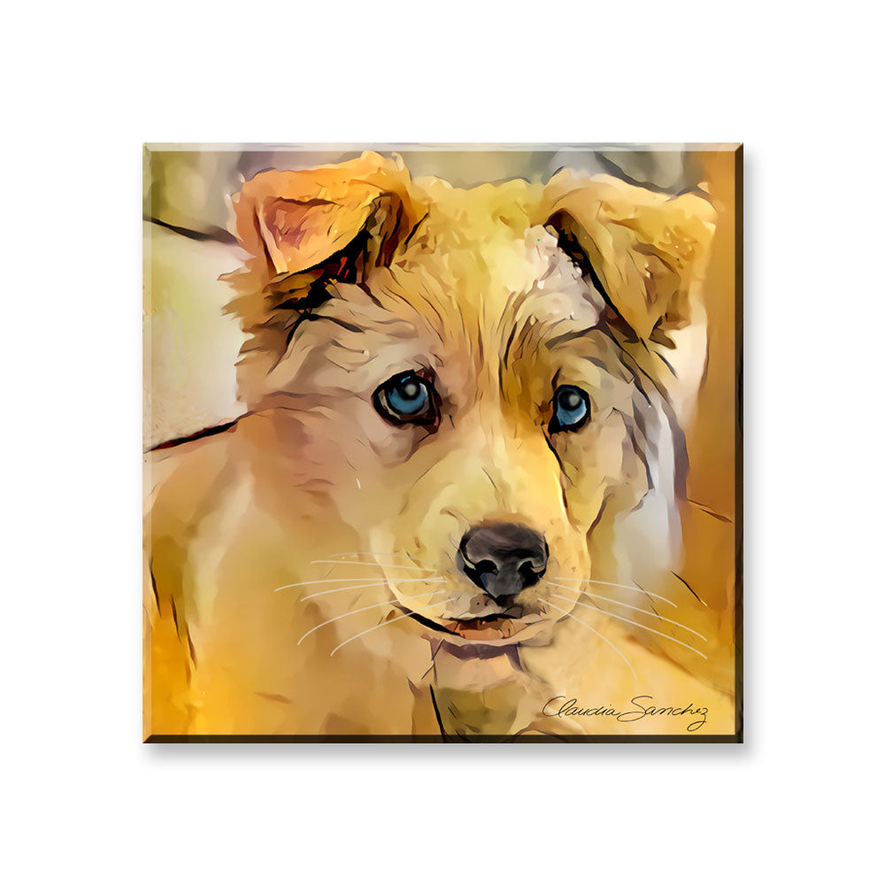Tucker - Dog Art Magnet by Claudia Sanchez