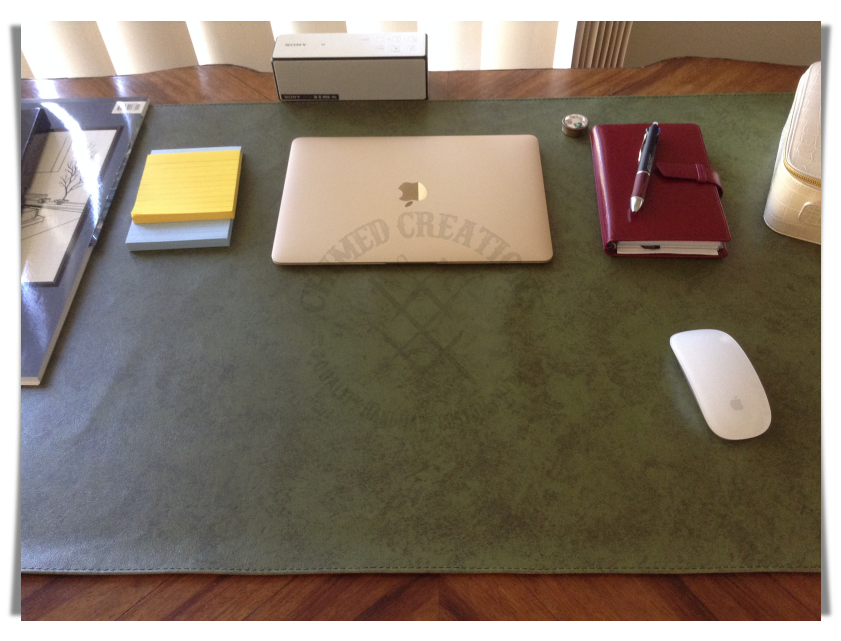 #3401 Leather Table Mat