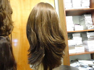 "European Multidirectional 16"" Straight Brown with Highlights #8/4 - wigs, Women's Wigs - kosher, Malky Wigs - Malky Wigs"