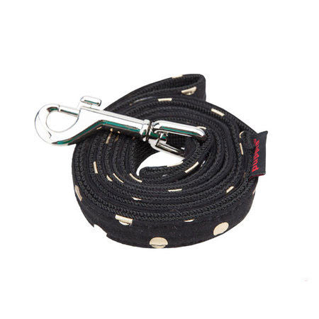 Modern Dotty Lead