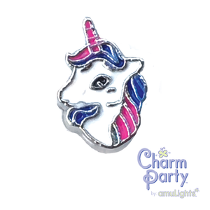 Unicorn ~ Rainbow Charm