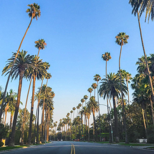 #WhatGivesUsPrana - Our favorite spots in Los Angeles