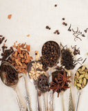 Spoons with all chai ingredients
