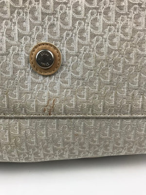 Dior Canvas Handbag