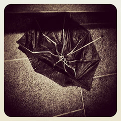 Storm damaged umbrella