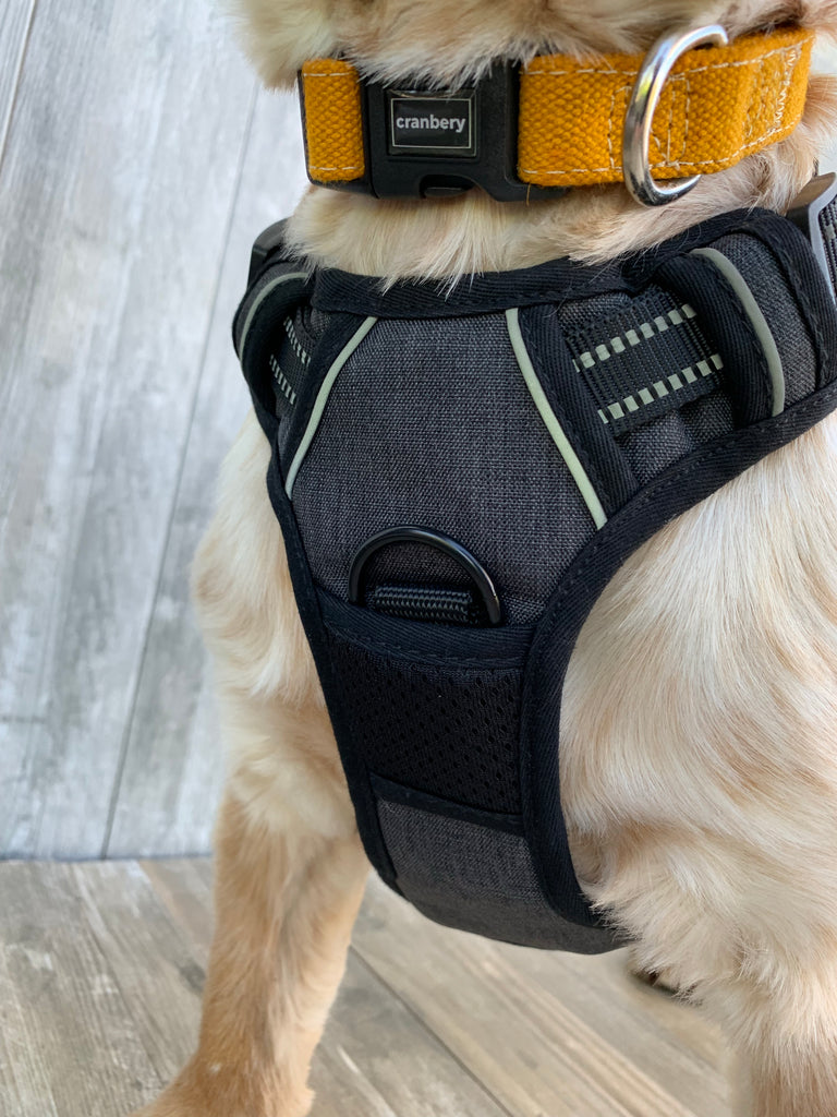 The Cranbery© No Pull Dog Harness