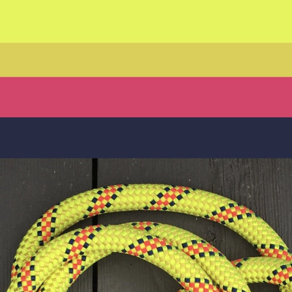 The Lumos Climbing Rope Dog Lead
