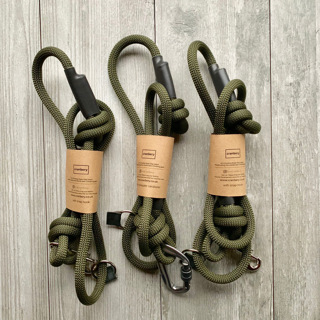 The Regent Climbing Rope Dog Lead
