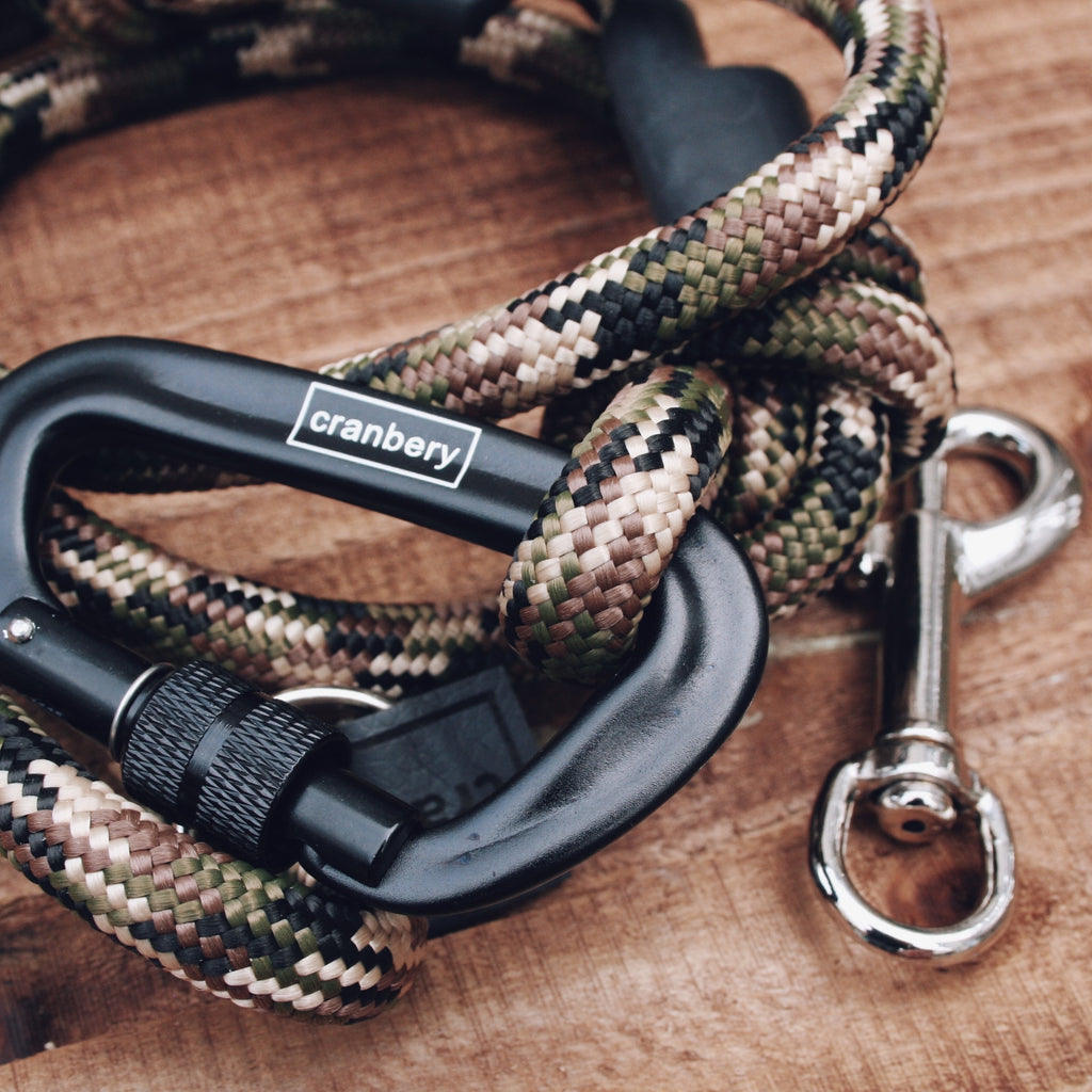 The Apex Climbing Rope Dog Lead