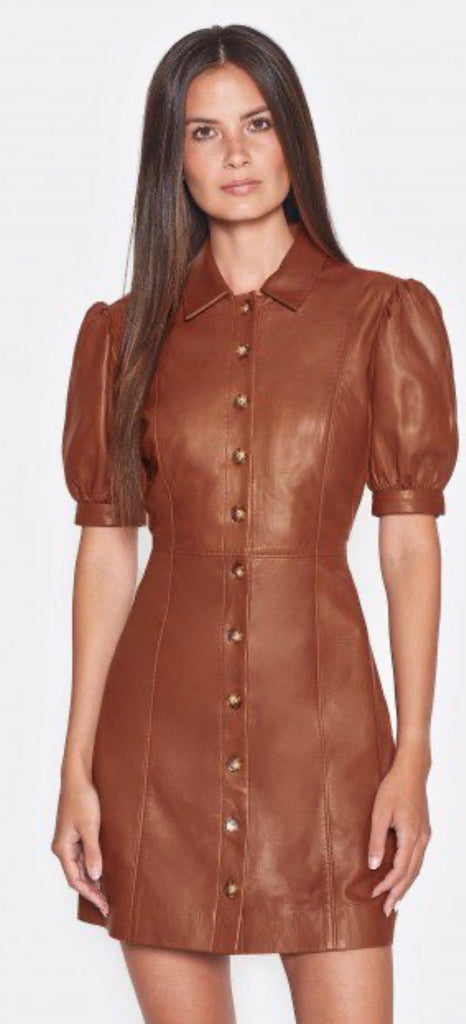 Joie Fidal - cocoa leather dress