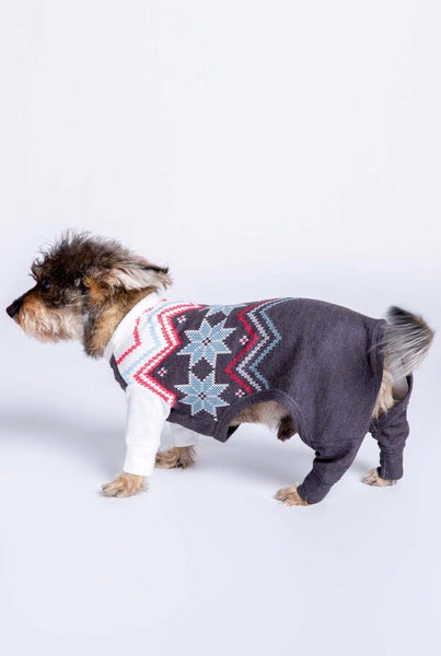 Pj Salvage dog fair isle sweater