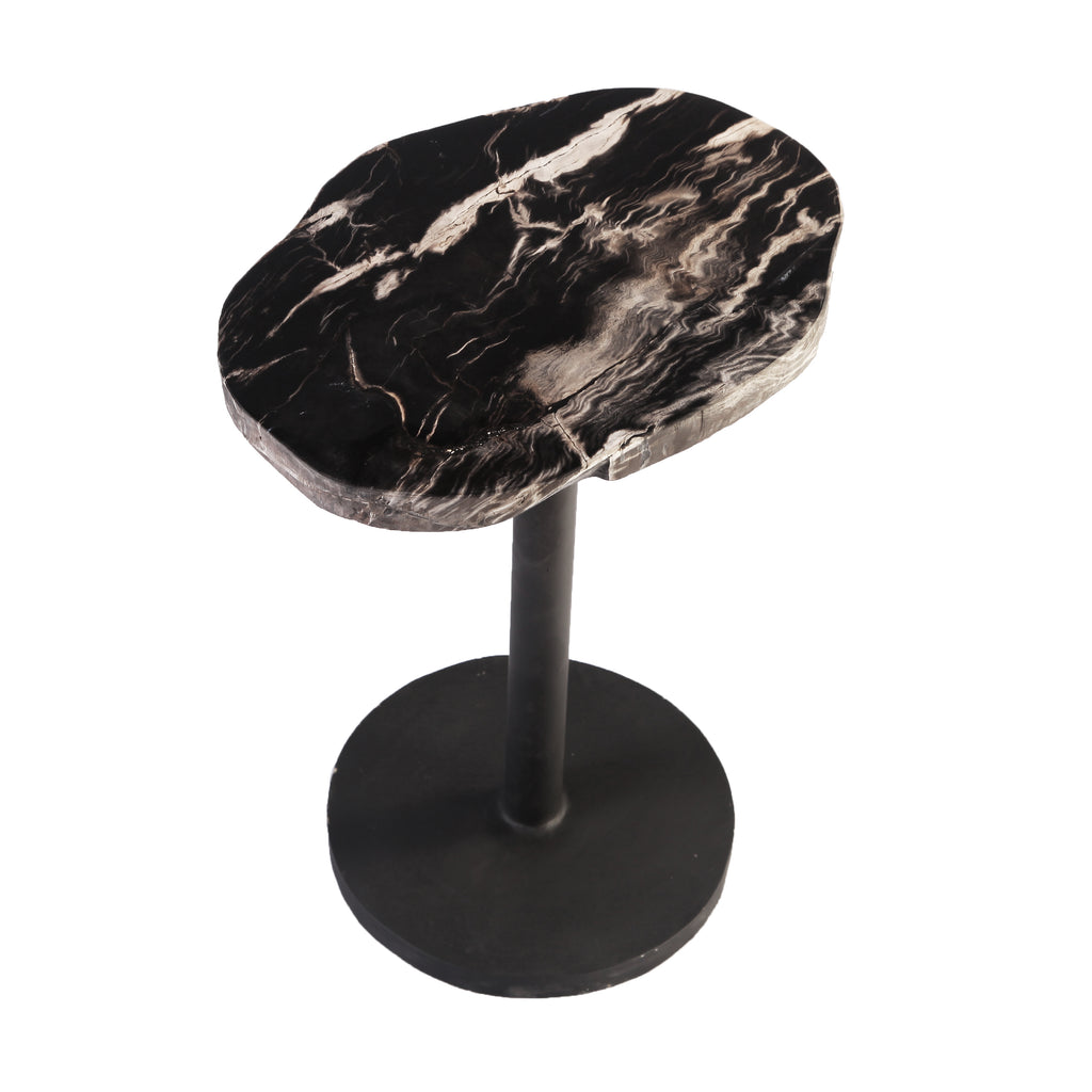 Petrified Wood Top w Iron Stand Accent Table or Side Table 1 - Dyag East