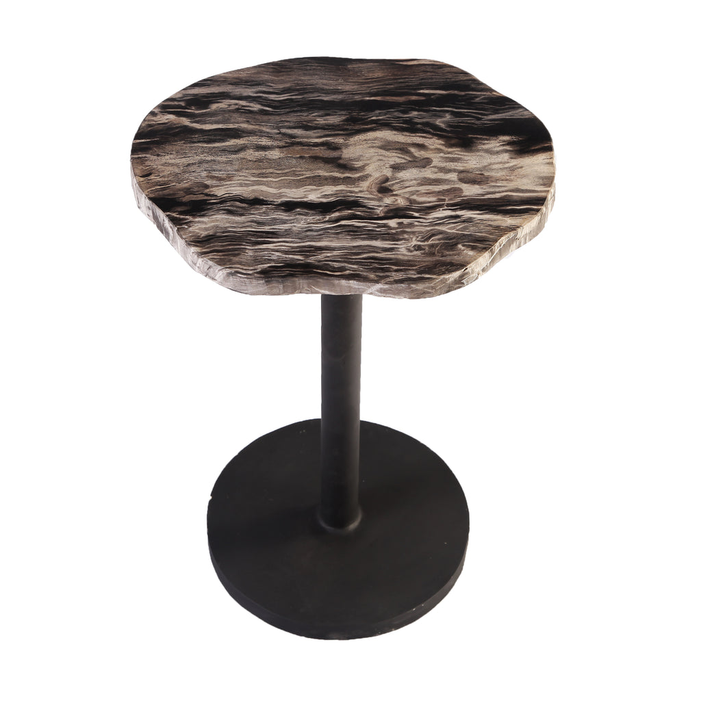 Petrified Wood Top w Iron Stand Accent Table or Side Table 2 - Dyag East