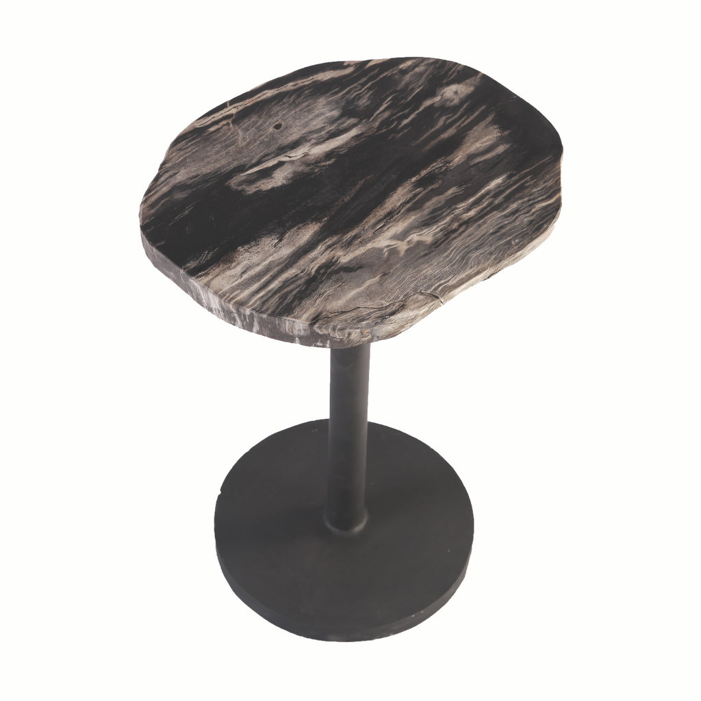 Petrified Wood Top w Iron Stand Accent Table or Side Table 3 - Dyag East