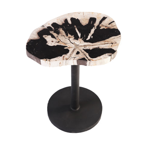 Petrified Wood Top w Iron Stand Accent Table or Side Table 4 - Dyag East