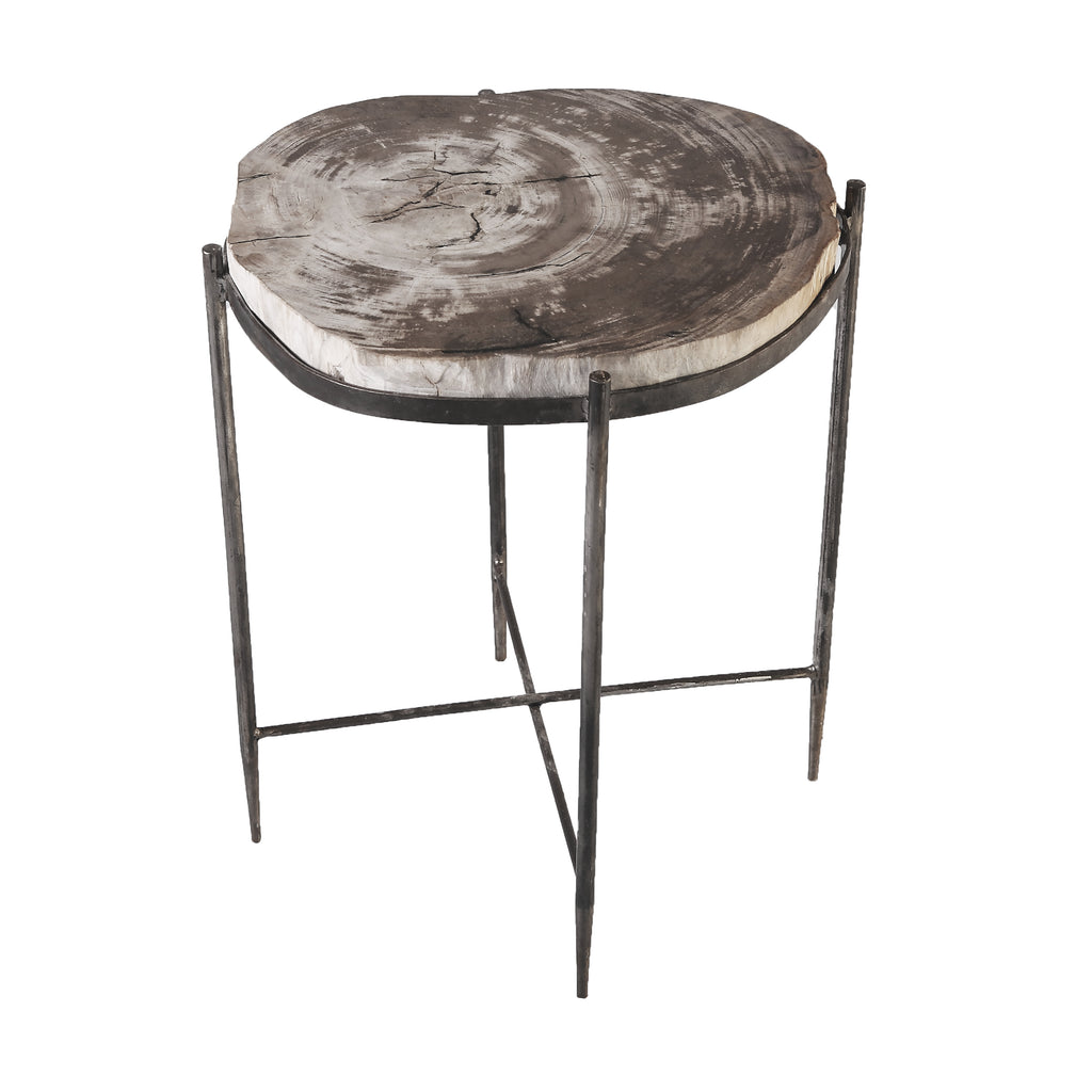 Round Living Edge Petrified Wood Top w Iron Stand Accent Table or Side Table 3 - Dyag East