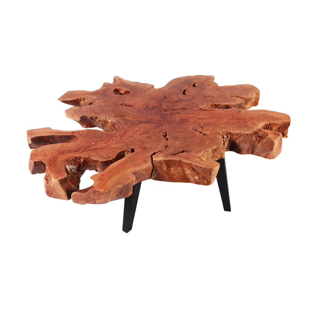 Modern Lychee Living Edge Coffee Table 2 - Dyag East