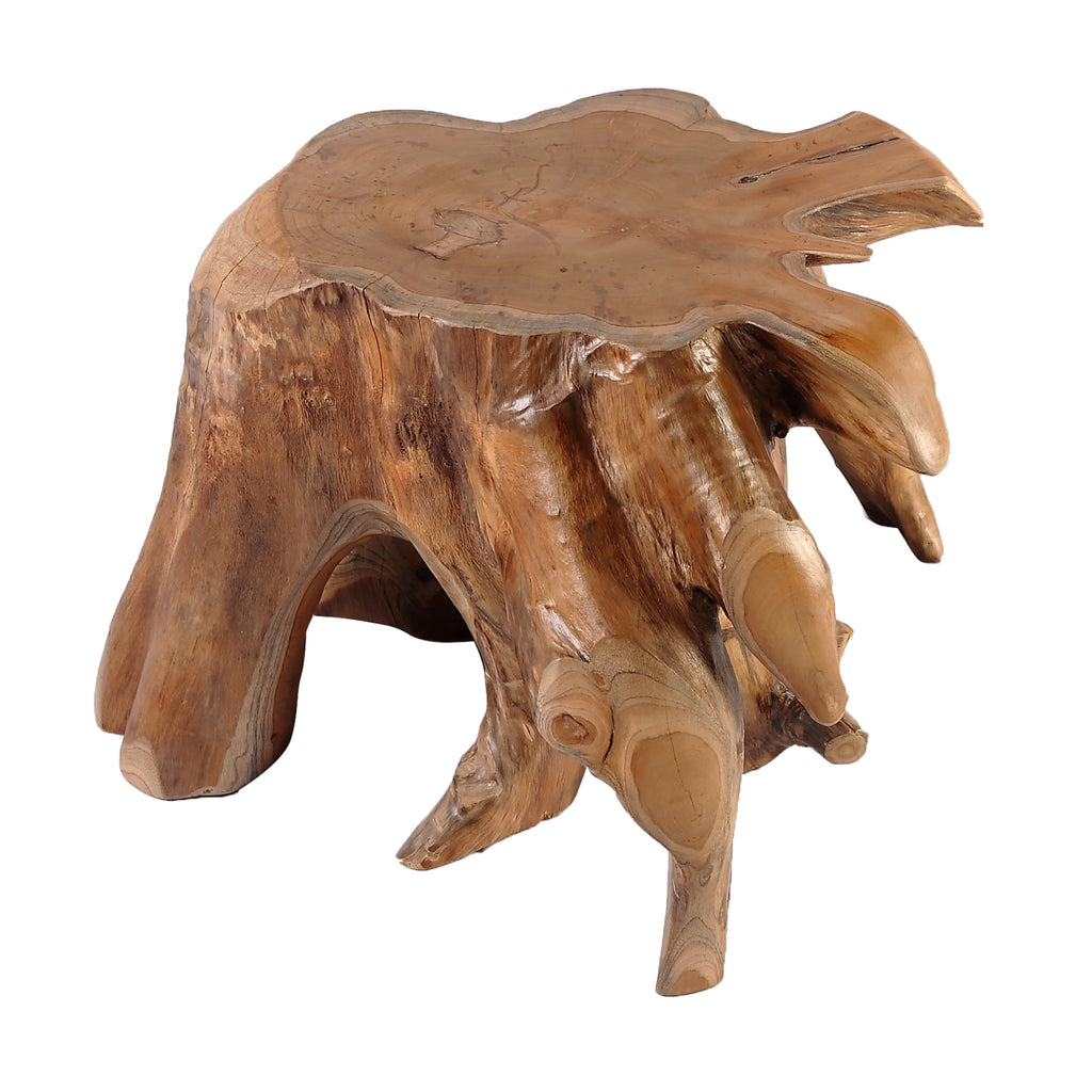 Nature Teak Root Accent or Side Table or Stool 4 - Dyag East