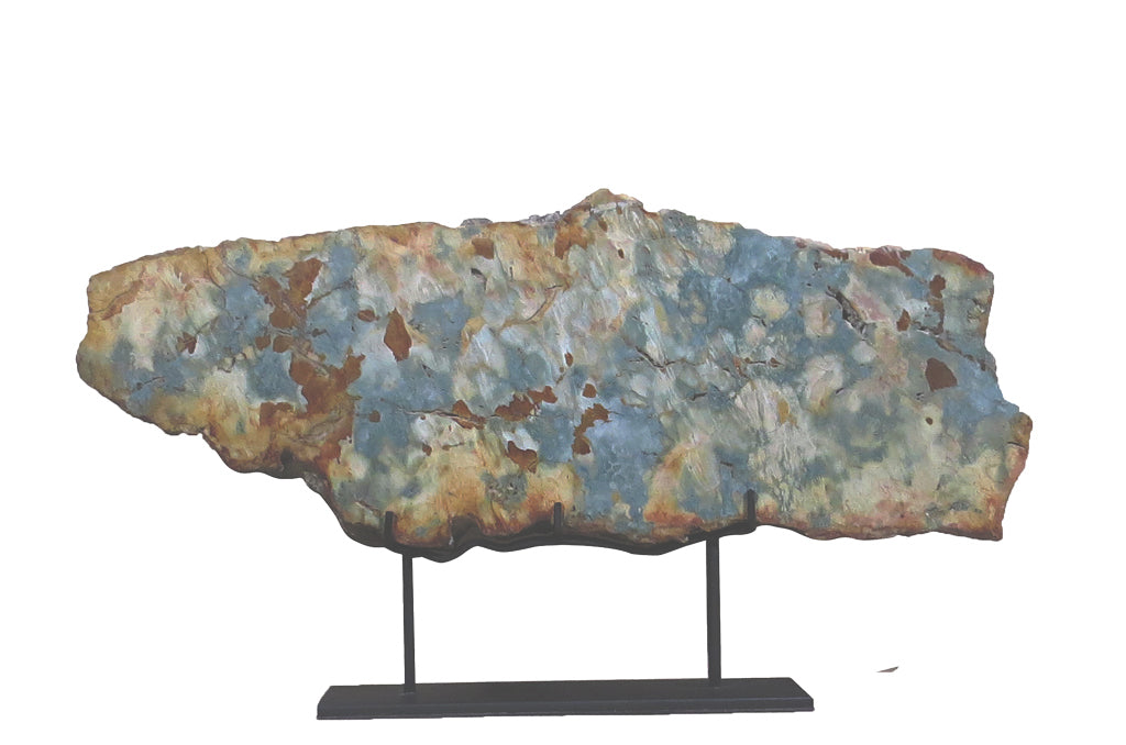 Natural Multi Colored Petrified Wood Display Plate - Dyag East