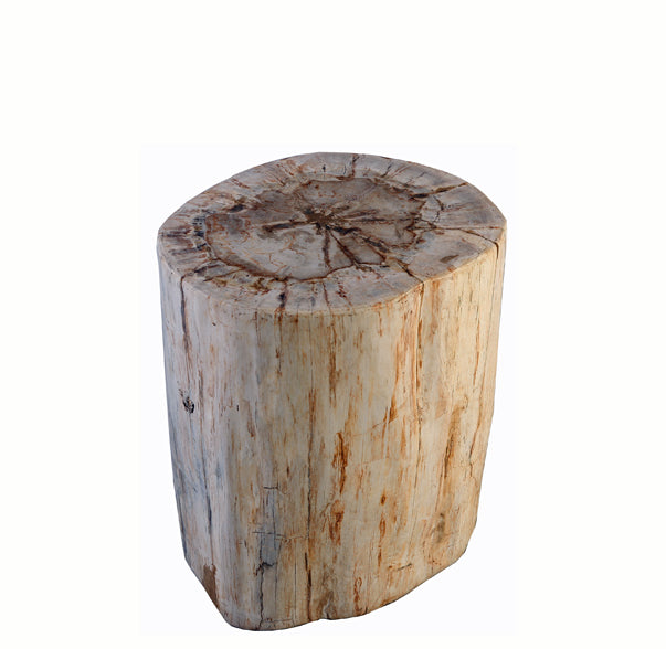 Z-Petrified Wood Stool Accent Table 9 - Dyag East