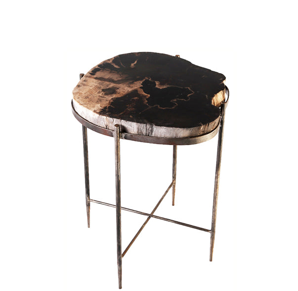 Round Living Edge Petrified Wood Top w Iron Stand Accent Table or Side Table 1 - Dyag East