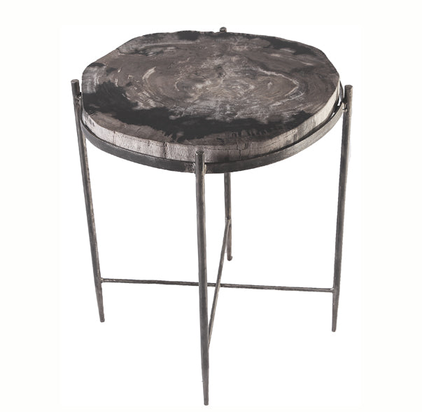 Round Living Edge Petrified Wood Top w Iron Stand Accent Table or Side Table 6 - Dyag East