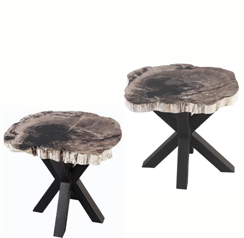 Pair Petrified Wood Top w Iron Stand Accent Table - Dyag East