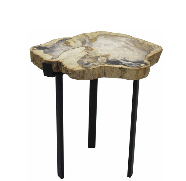 Petrified Wood Top w Iron Stand Accent Table 14 - Dyag East