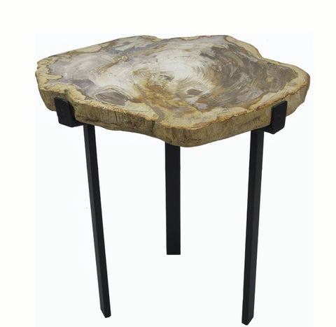 Petrified Wood Top w Iron Stand Accent Table 15 - Dyag East