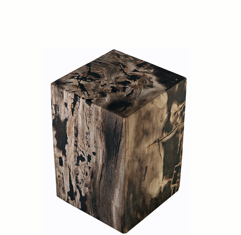 Z-Petrified Wood Stool Accent Table 4 - Dyag East