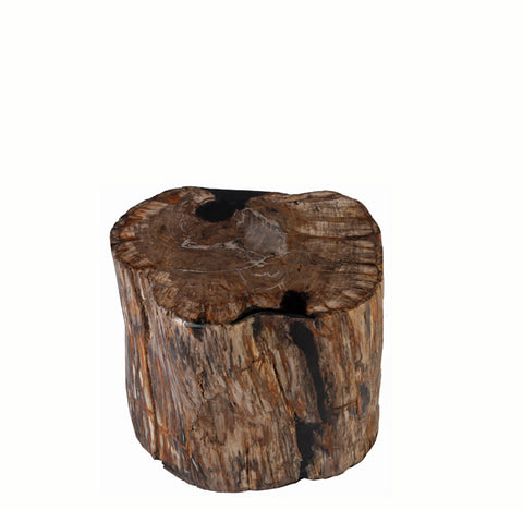 Petrified Wood Stool Accent Table 5 - Dyag East