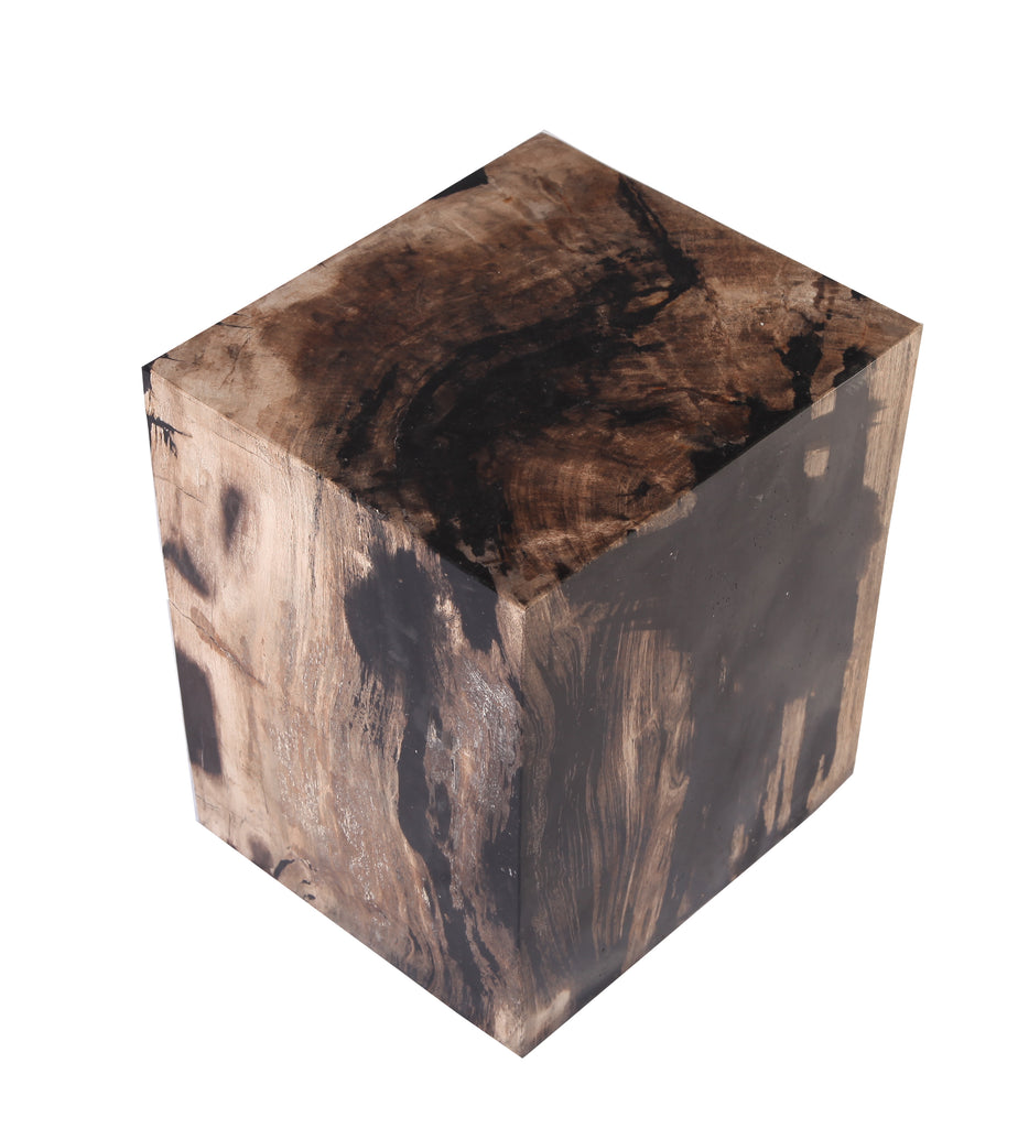 Petrified Wood Stool Accent Table 6 - Dyag East