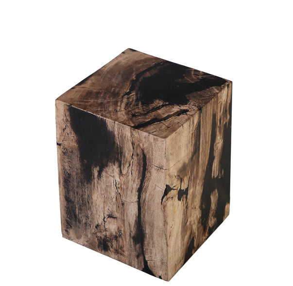 Petrified Wood Stool Accent Table 7 - Dyag East