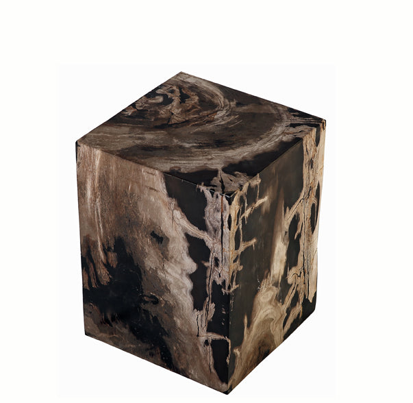 Petrified Wood Stool Accent Table 8 - Dyag East