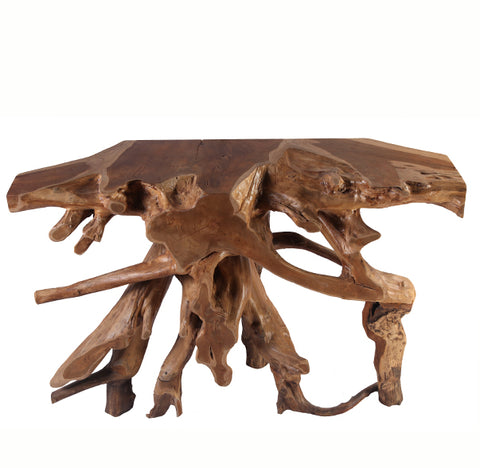 Teak Root console Table 1 - Dyag East