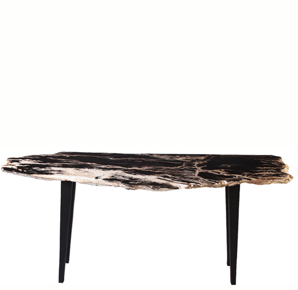 Living Edge Petrified Wood Console Table - Dyag East