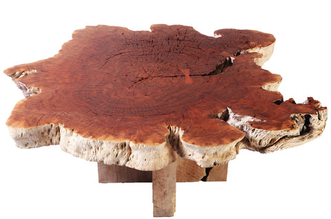 Rustic Round Living Edge Coffee Table - Dyag East