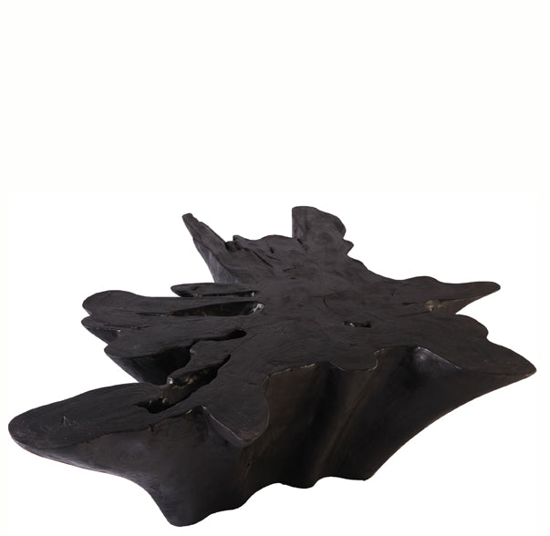 Black Burnt Teak Root Coffee Table - Dyag East