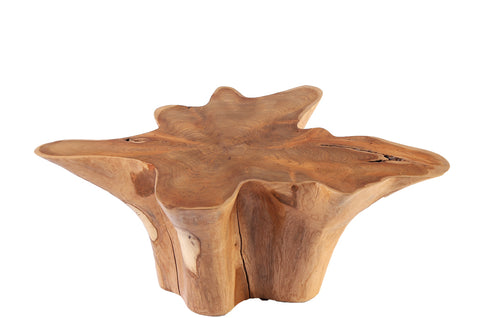 Z-Star Teak Root Coffee Table 1 - Dyag East