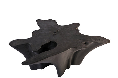 Z-Star Black Teak Root Coffee Table 1 - Dyag East